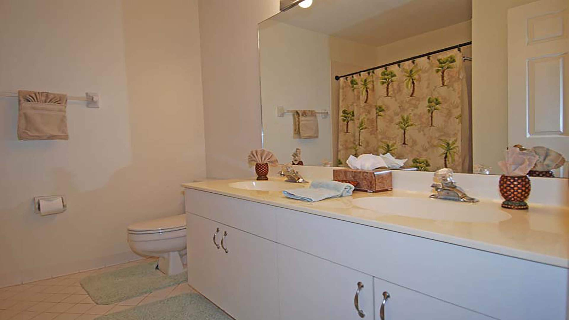third bathroom witsch shower tub and double sink
